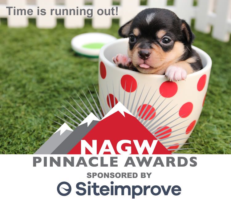 Time is running out to enter the Pinnacle Awards!